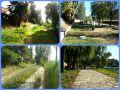 collage antes y despues
